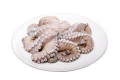Ny bläckfisk som är rå och Arkivbild