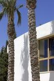 ny blå byggnad gömma i handflatan vita skytrees Royaltyfri Foto