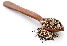 Ny blandad quinoa Fotografering för Bildbyråer