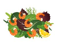 Ny blandning av salladsidor med räka och citronen också vektor för coreldrawillustration royaltyfri illustrationer