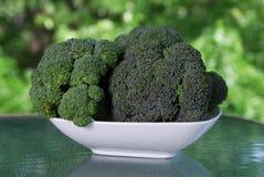 ny broccoli arkivfoton