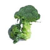 Ny broccoli som isoleras på vit Royaltyfri Foto