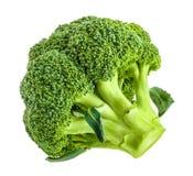 Ny broccoli som isoleras på vit utan skugga royaltyfria foton