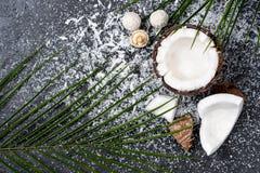 Ny bruten kokosnöt med shavings på svart arkivbilder