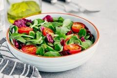 Ny bunke f?r gr?n sallad med radicchio, tomater och pumpafr? arkivbilder