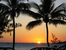 Ny Caledonian solnedgång Arkivbilder