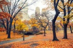 NY Centraal park bij regenachtige ochtend royalty-vrije stock foto's