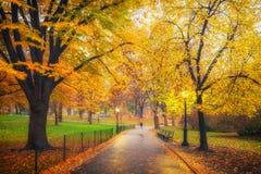 NY Central Park alla mattina nebbiosa Fotografia Stock