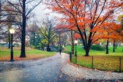 NY Central Park på den regniga dagen Royaltyfria Foton