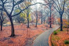 NY Central Park på den regniga dagen Royaltyfri Bild