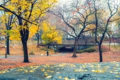 NY Central park at rainy day Royalty Free Stock Image