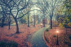 NY Central park at rainy day Royalty Free Stock Photos