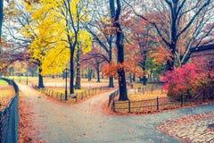 NY Central park at rainy day Royalty Free Stock Images