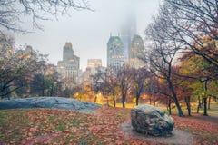 NY Central park at rainy morning. Central park at rainy morning, New York City, USA Royalty Free Stock Image