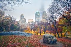 NY Central park at rainy morning Stock Image