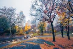 NY Central park at rainy morning. Central park at rainy morning, New York City, USA Royalty Free Stock Photo
