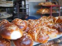 Ny Challah från bagerit Royaltyfri Fotografi