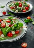 Ny Cherry Tomato, Mozzarellasallad med den gröna grönsallatblandningen och den röda löken tjänat som på plattan sund mat royaltyfri bild