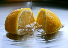 ny citron Royaltyfria Bilder