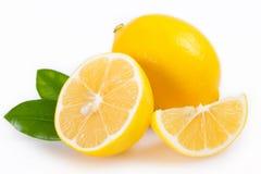 ny citron Royaltyfri Fotografi