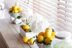 Ny citron för ask med is och mintkaramellen Citroner på bakgrund Arkivbild