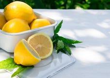 Ny citron och en kvist av mintkaramellen Royaltyfri Foto