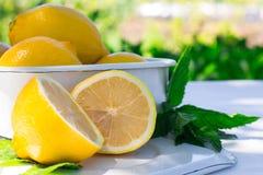 Ny citron och en kvist av mintkaramellen Arkivbilder