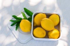 Ny citron och en kvist av mintkaramellen Fotografering för Bildbyråer