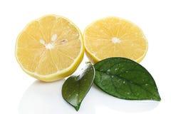 Ny citron på vit bakgrund Arkivfoton