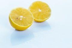 Ny citron på vit bakgrund Arkivbilder
