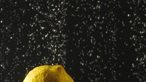 Ny citron som faller in i vattnet med bubblor på svart bakgrund Nya bär i vattnet Organiskt bär, frukt lager videofilmer