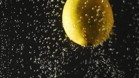 Ny citron som faller in i vattnet med bubblor på svart bakgrund Nya bär i vattnet Organiskt bär, frukt stock video