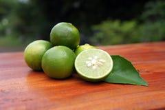ny citronskiva Royaltyfri Foto