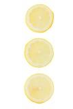 ny citronskivayellow arkivfoton