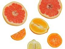 ny citrus royaltyfria foton