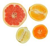ny citrus arkivfoto