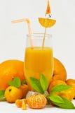 Ny citrus fruktsaft Royaltyfri Fotografi