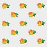Ny citrus med mintkaramellen vektor illustrationer