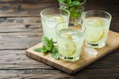 Ny coctail med sodavatten och citronen royaltyfri fotografi