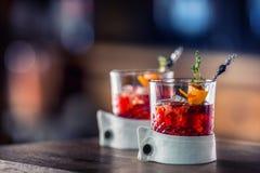 Ny coctaildrink med isfrukt- och örtgarnering Alkoholist icke-alkoholist drink-dryck på stångräknaren i baren royaltyfria bilder