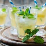 Ny coctailwitnsodavatten, citron och mintkaramell royaltyfri fotografi