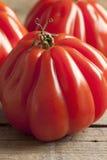 Ny Coeur de Boeuf Tomat Arkivbild