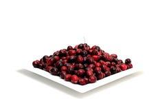 ny cranberry royaltyfria bilder