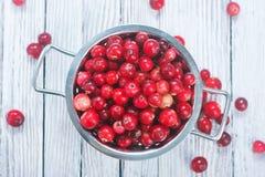 ny cranberry royaltyfri foto