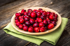 ny cranberry fotografering för bildbyråer