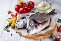 Ny dorado för rå fisk Fotografering för Bildbyråer
