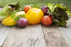 Ny färgrik strikt vegetarian för grönsakingrediensfo och sund matlagning- eller salladdanande på lantlig bakgrund, bästa sikt, ra royaltyfri foto