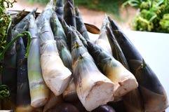 ny for för bambu arkivfoto