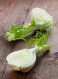 ny fennel Royaltyfria Bilder
