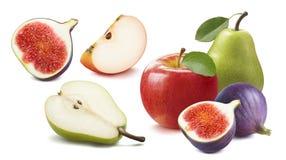 Ny fikonträd, äpple, päronuppsättning som isoleras på vit arkivbild